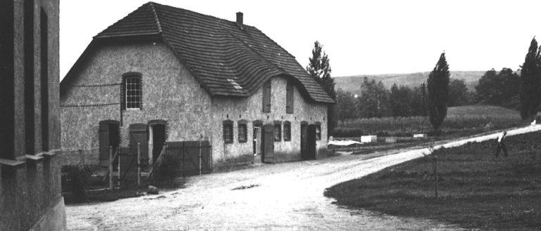 geschichte Hinterste Mühle Neubrandenburg
